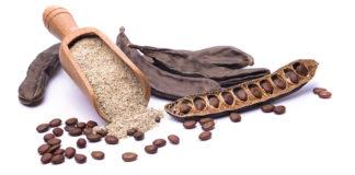 Algarroba y harina de algarroba de cultivo ecológico: virtudes