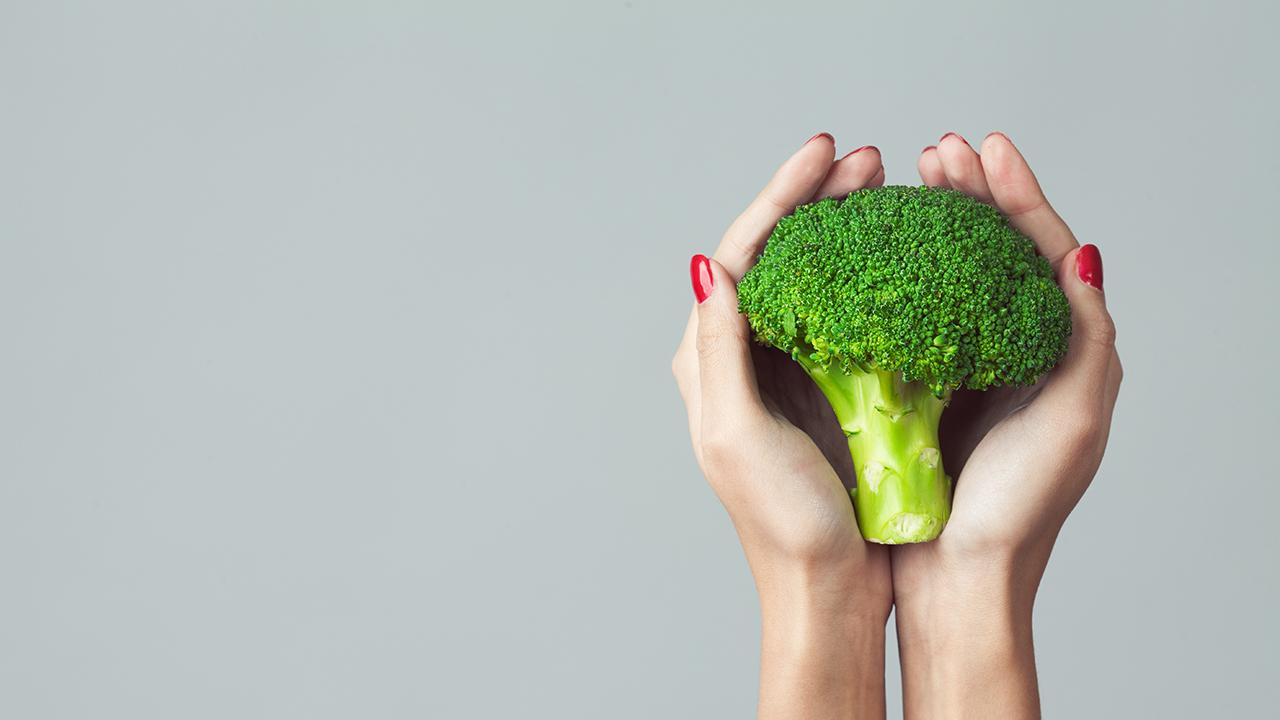 la filosofa de un estilo de vida eco bio orgnico sostenible sano y saludable